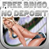 Free Bingo No Deposit 1.0