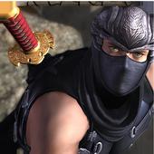 RPG Ninja Quest 3D 1.3