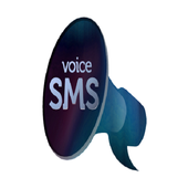Voice To Sms - No Typing 14