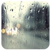 Rain 4 91 Launcher Theme