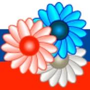 Russian Margarita 5