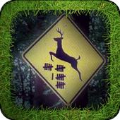 Deer CrossingFire Rainbow StudioArcade