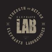Elephants LAB 4.2.5