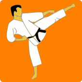 Kung Fu Master 1.68