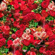Flowers Wallpaper 1.0