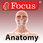 Anatomy Atlas 1.9