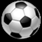 Premier League : 2015-16 14