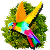 Rainbow Wings 1.0.0.0