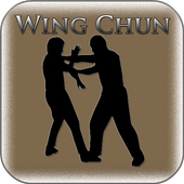 Wing Chun Training 1.0