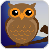 Owl Game Free: Match and Link