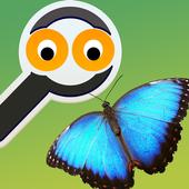 Zoom Trivia - Animals Edition 1.0.4