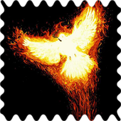 Fiery bird in darkness Live WP 1.0