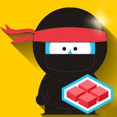 Funny Ninja 114