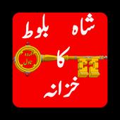 Shah Balut Ka Khazana (Novel) 1.1