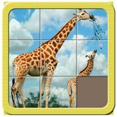 Fast Puzzle 11 1.1.0