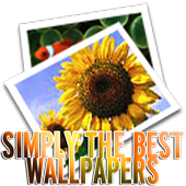 Simply The Best Wallpapers HD 1.0