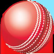 Cricket Speed Gun 3.1