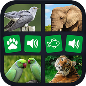 Animal sounds+pictures App For kids 1.0