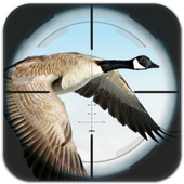 Flying Bird Hunting 1.1