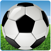 Real Football Fever 1.1