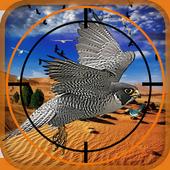 Birds Hunter in Desert 1.3