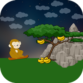 Forest For Monkey