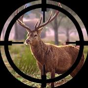 Deer Hunting Sniper ShootingGaming ManiaAction