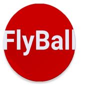 Flying BallSergey UbogovCasual