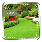 Lawn Care Tips 2.0