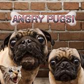 Angry Pugs by GetPuggedUp.com