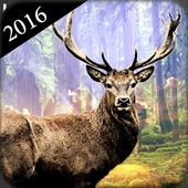 Deer Hunter : Deer Hunting 1.0