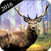 Deer Hunter : Deer Hunting 1.0