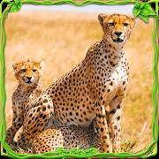 Wild Cheetah Adventure Sim 🐅 1.1