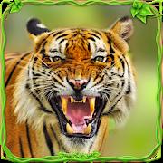 Furious Tiger Simulator 🐅 1.1.1