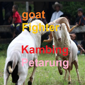 goat Fighter 1.0