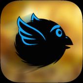 Go BirdiesPixel Mount GamesAdventure