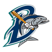 Bridgeport Bluefish 1.5.505.31