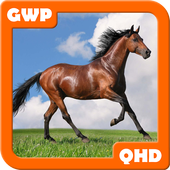 Horses Wallpapers 1.2