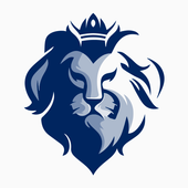 Lion VPN - MTproto  Proxy for Telegram 11
