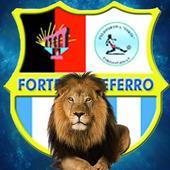 Polisportiva Forte Colleferro
