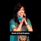 Best of Gul Panra 1.0