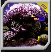 Aquarium Radiance WALLPAPER 1.0