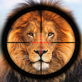 Real Wild Lion Attack: Hunting