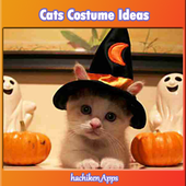 Cats Costume Ideas 1.0