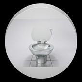 Toilet flush cover the noise