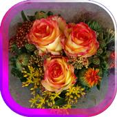 Valentine Roses live wallpaper 1.0