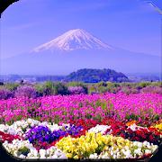Beautiful Spring Wallpaper 4k 107 Apk Download Android