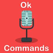 OK Voice Commands 10.0