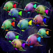 Fish HD Wallpaper 1.0.3