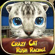 Crazy Cat Rush Racing Run Kitty Craft 1.01